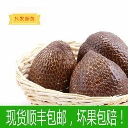 现货印尼特产蛇皮果2斤装宜用脑人群记忆果进口水果新鲜顺丰包邮