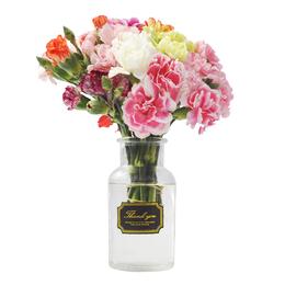 鲜花真花花期长特价16.9包邮多头康乃馨鲜花速递混搭花束云南昆明