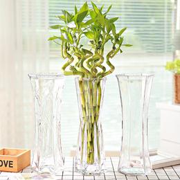 透明家用高35cm养竹子竹花瓶放转运竹富贵玻璃水培瓶子大号的花瓶