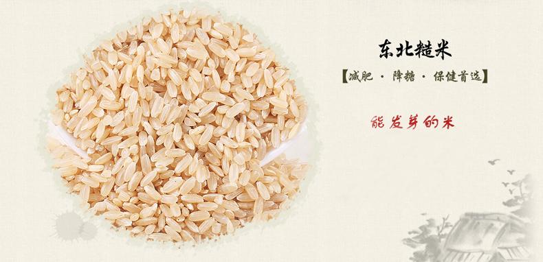2015新糙米500g 有机东北粗粮 发芽米粳米五谷杂粮 玄米 5斤包邮