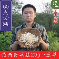 中药材小通草60g 月子产后下奶通乳增奶大通草配当归黄芪王不留行