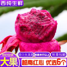 越南红心火龙果6个进口红肉大果新鲜水果 单果约400g 西纯生鲜