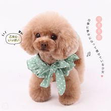Special! Meimei Chiffon Butterfly Knot Shirt Pet Spring and Summer Dress Dog Elegant Small Shirt Teddy Clothes