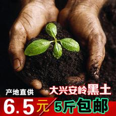东北黑龙江黑土腐殖土腐叶土松针土泥土营养山土养花土种菜土包邮