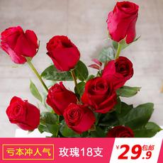 玫瑰花鲜花红白粉黄玫瑰花束18支家庭插花情人节礼物鲜花批发速递