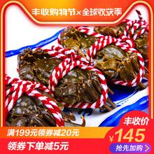 全母螃蟹1.4 1.9两10只稻田蟹大闸蟹 盘锦河蟹 螃蟹现货鲜活
