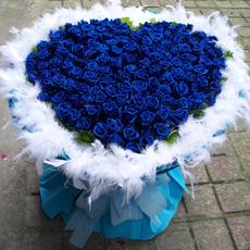 99朵蓝色妖姬玫瑰花天津广州同城鲜花速递成都南京长沙杭州无锡送
