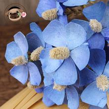 紫罗兰手工干花束ins家居客厅装 饰diy插花艺术拍摄小清新真花