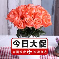 【花草时光】玫瑰花鲜花速递百合花康乃馨包邮EMS空运到家!