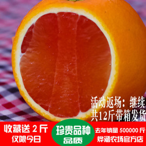 秭归脐橙 血橙 正宗新鲜红心红肉榨汁 橙子 水果胜赣南麻阳冰糖橙脐橙新鲜