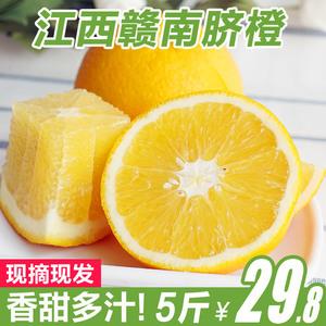 现摘现发 江西赣南脐橙新鲜水果橙子5斤香甜非永兴冰糖橙柑橘包邮新鲜橙子