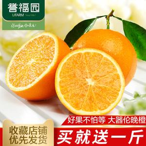 送1斤 实发4斤【誉福园】湖北秭归伦晚脐橙 新鲜水果甜橙子尝鲜装新鲜橙子