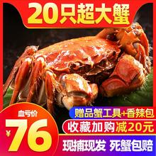 抢20只 大闸蟹鲜活洪泽湖螃蟹现货六月黄特大蟹公蟹母蟹礼盒