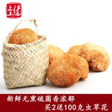 猴头菇干货非野生猴头菌山货土特产候头菇养胃古田煲汤年货250g
