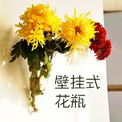 mxmade透明玻璃花瓶悬挂式墙壁花瓶创意居家装饰品2款可选