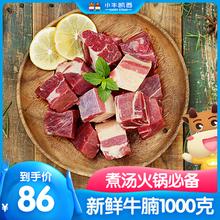 牛腩 牛肉新鲜生牛肉 小牛凯西 澳洲进口肉源牛腩1KG 牛腩块