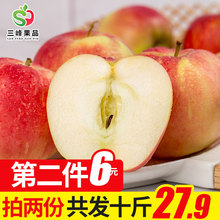 现货临猗新鲜嘎啦苹果当季水果甜脆嘎啦苹果现摘苹果新鲜5斤 包邮