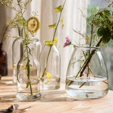 小型玻璃器皿花瓶花器花插小口玻璃瓶收纳瓶韩式日式清新 掬涵