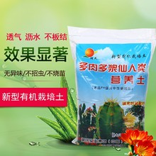 Special Cultivation of New Meat and Milky Cactus Plants Nutritional Fertilizer for Opuntia dillenii Soil Free of Domestic Freight