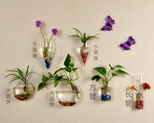 壁挂透明水培玻璃花瓶 悬挂鱼缸 创意<span class=H>家居</span>墙壁装饰品墙上花盆包邮