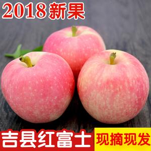 山西吉县红富士<span class=H>苹果</span>2018年当季水果新鲜不打蜡壶口小<span class=H>苹果</span>5斤包邮
