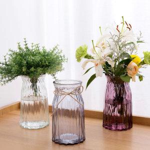 玻璃花瓶欧式简约水养植物器皿玻璃瓶客厅摆件鲜花插花<span class=H>水培</span>干花瓶