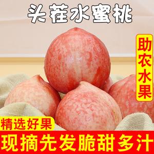 【现摘现发】新鲜脆甜水蜜桃5斤