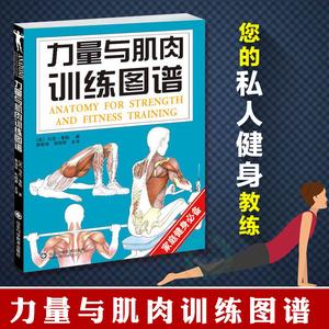 力量与肌肉训练图谱 保健心理类书籍 健身书籍健身运动 体育运动 运动健康 健身与保健 体育训练解剖学 肌肉拉伸训练书 肌肉力量