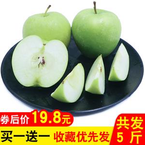 山西临猗新鲜青苹果 当季<span class=H>水果</span>非红富士现摘现货 5斤 两件10斤包邮