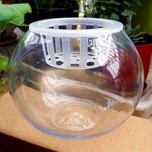 室内绿萝<span class=H>水培</span>花盆透明玻璃花瓶大号花卉水养植物器皿鱼缸客厅摆件