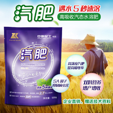 Carbon Dioxide Nutritional Fertilizer New Leaf Fertilizer Microelement Fertilizer Vegetable and Fruit Tree Growth-promoting Leaf Fertilizer in Greenhouse