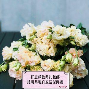 鲜花洋桔梗同城速递云南基地直发全国送花爱意表达生日祝福鲜切花