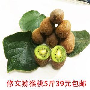 贵州猕猴桃修文贵长猕猴桃新鲜<span class=H>水果</span>奇异果5斤装中小果全国包邮