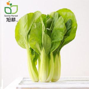 【旭耕】有机小油菜350g 净菜青菜 附可追溯二维码 满120顺丰包邮