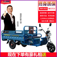 Electric tricycle truck load Wang Adult new farm battery truck express truck freight tricycle family car