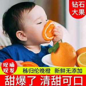 春橙伦晚鲜橙当季新鲜水果手剥奉节橙子带箱5斤秭归伦晚脐橙9斤10