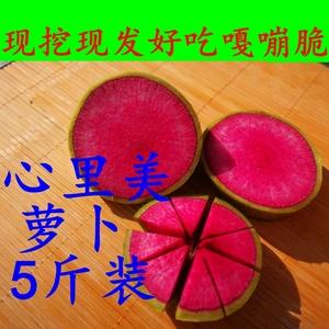 新鲜心里美萝卜5斤 绿皮红心胭脂<span class=H>水果</span>萝卜蔬菜2500g 雕刻萝卜