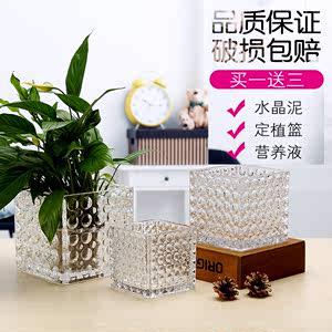 加厚几何正方形缸花瓶玻璃透明珠点方缸绿萝水培<span class=H>鱼缸</span>水养多肉花盆