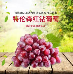 泰和生活 国产特伦森红钻葡萄 1.5kg 新鲜<span class=H>水果</span> <span class=H>提子</span>