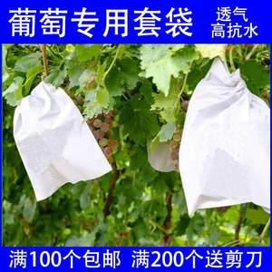 白葡萄西红柿包装用水果套袋<span class=H>纸袋</span>育果袋果树<span class=H>桃</span>子袋子环保袋透气