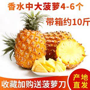 新鲜中大菠萝约10斤徐闻手撕菠萝饭凤梨<span class=H>水果</span>香水菠萝皮除味赠送刀