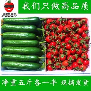 霸果新鲜小番茄西红柿圣女果<span class=H>水果</span>小黄瓜5斤混装农家蔬菜特价包邮