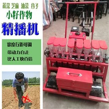 Vegetable precision seeder Sesame millet rapeseed small seed crop seeder gasoline self-propelled on-demand seeder farming machinery
