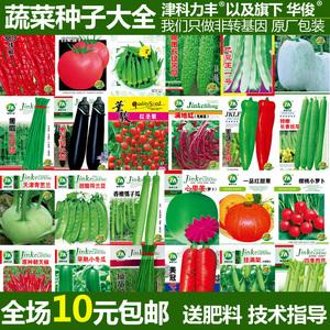 家庭阳台蔬菜瓜果种子盆栽蔬菜种子<span class=H>水果</span>黄瓜种子辣椒种子春秋播种