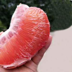 红心<span class=H>柚子</span>新鲜应季时令孕妇水果5斤 琯溪红肉蜜柚非沙田柚西柚现货