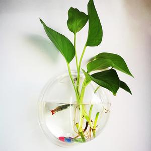 水养<span class=H>鲜花</span>瓶园艺花瓶水养花器壁挂花瓶富贵竹花盆花卉绿植花器