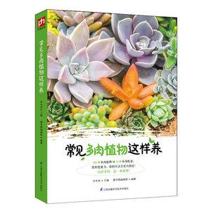 常见多肉植物这样养 多肉植物种植图鉴花卉种植养殖园艺教材 养花书籍 健康花草居家生活休闲保健心理健康 正版全新书籍