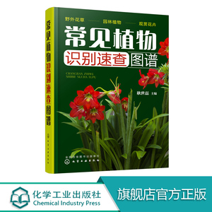 常见植物识别速查图谱 孩子百科知识读物 常见植物便携式百科全书 野外识别常见植物鉴别图册 鉴定常见植物工具书 家庭百科书籍